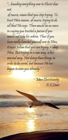 C.S.Lewis ~ Mere Christianity