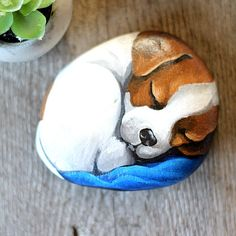 Jack Russell painted dog rock hand painted Jack Russell