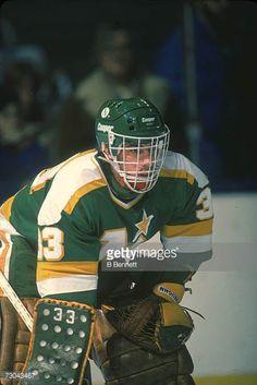 Don Beaupre Ice Hockey Rink, Hockey Goalie, Minnesota North Stars, Minnesota Wild, Nfl Cheerleaders, Cheerleading, Wild North, Hockey Room, Goalie Mask