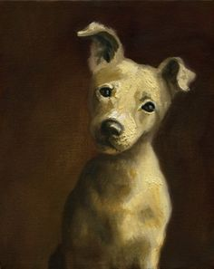 Tessa Guze - Pet Portrait Gallery, pet portraits, pet paintings ...