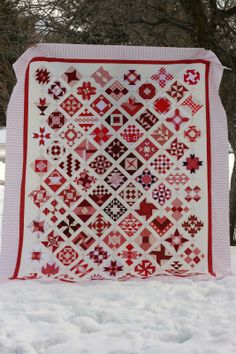 A Little Bit Biased: Farmer's Wife Quilt