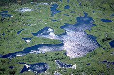 Wood Buffalo National Park, Athabasca, Lake: delta of the Athabasca and Peace rivers [Credit: Greg Stott