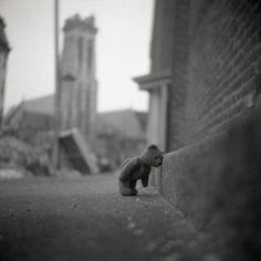 .sad bear.