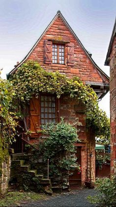tiny brick house with wooden shutters, accented with vines + foliage