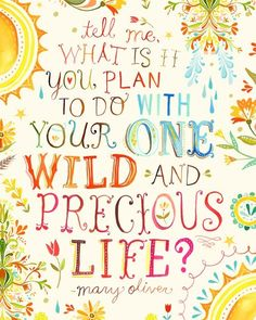 """Tell me, what is it you plan to do with your one wild and precious life?""  -- Mary Oliver"