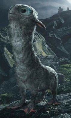 The Mooncalf is a shy magical creature that only comes out of its burrow during a full moon. New Moon Rituals, Full Moon Ritual, Hogwarts, Bulging Eyes, Moon In Leo, Beast Creature, Fantastic Beasts And Where, Super Moon, Harry Potter Universal