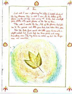Waldorf ~ 5th grade ~ Botany ~ Tree ~ main lesson book