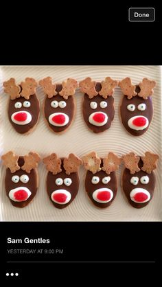 Easy Christmas biscuit decoration - oval malt biscuit, choc icing or melted chocolate, tiny teddy's, strawberries & cream & away you go! Fun for the kiddies