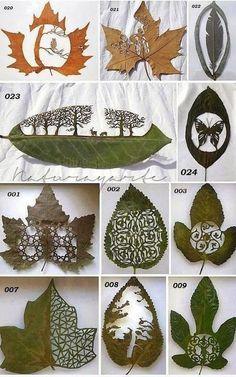 "bochinohito: ""Ashish T - Google+ - Amazing Leaf Art by Lorenzo Duran """