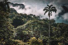 30 lugares para conhecer no Rio de Janeiro de graça - Viajei Bonito