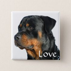 #Love Rottweiler Black & Brown Puppy Dog Pin Button - #rottweiler #puppy #rottweilers #dog #dogs #pet #pets #cute