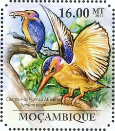 African Pygmy Kingfisher stamps - mainly images - gallery format