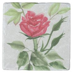 Red Rose - Stone Coaster - available via Zazzle