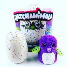 #hatchimals#интерактивныйпитомец#hatchimalsоригинал#купитьHatchimals#подароксыну#подарокдочке#отправляемпороссии#