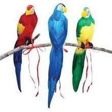 """20"""" Feathered Parrot $9 online"""