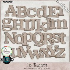 In Bloom: Color Splash Alpha   #theStudio #digiscrap #inbloom