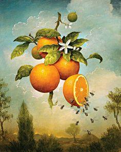 картинки для декупажа лимоны: 10 тыс изображений найдено в Яндекс.Картинках