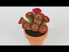 Crochet Cactus Free Pattern, Crochet Flower Patterns, Cute Crochet, Crochet Flowers, Knit Crochet, Succulents In Containers, Cactus Plants, Flower Power, Knitting