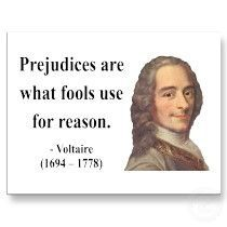 Prejudices are what fools use for reason - voltaire