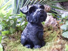 The sweetest schnauzer statue ever, look at that face with the beard and long feathery eyebrows. Schnauzers are incredibly friendly and loving little dogs and conveyed in the expression of this statue. This is conveyed in those expressive black eyes. May be of interest to schnauzer collectors or if you are looking for a heart warming stone memorial to honor your special friend. Beautifully detailed from every angle.  🐾 ❤ 🐾 ❤ 🐾 ❤ 🐾 ❤ 🐾 ❤ 🐾 ❤ 🐾 ❤ 🐾 ❤ 🐾 ❤ 🐾 ❤ 🐾 ❤   🌟 This sweet…