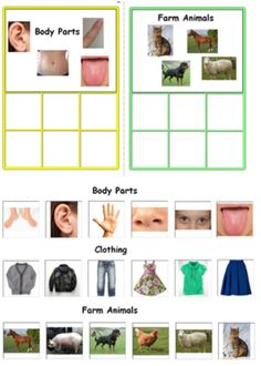 Category Sorting Boards-Autism & Special Needs. For more resources follow http://www.pinterest.com/angelajuvic/angie-s-tpt-store/