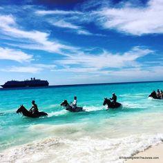 """""""Land & Sea"""" horse riding at Half Moon Cay, Bahamas"""