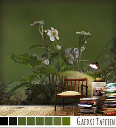 Blumen- & Blütenfotos als Tapete