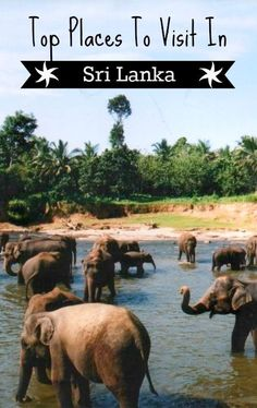 Top Places To Visit in Sri Lanka. Recommendations on Sri Lankas best tourist attractions. We love Sri Lanka, it's one of our favourite places in the world, we're back for a 4th visit next year.