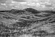 Klithede Denmark, My Photos, Explore, Mountains, Landscape, Nature, Travel, National Forest, Naturaleza