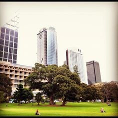 Relaxing on a Saturday afternoon in the Domain Park, Sydney Sydney, Things To Do, Relax, Paris, Reading, Pictures, People, Instagram, Aussies