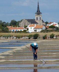 L'Ile d'Olonne - Pays de la Loire - France