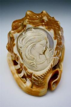 Antique Italian Carved Cameo w Whole Conch Shell Beautiful Woman w Dove No Res | eBay