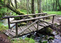 Bridge and brook