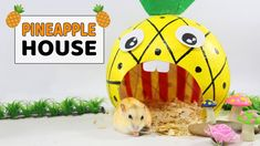 Happy SpongeBob House And Playground For Hamster- DIY Hamster Toys