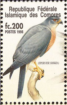 Shikra stamps - mainly images - gallery format