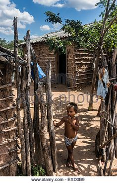 outside-a-wayuu-indigenous-family-home-in-a-rancheria-or-traditional-exd0b9.jpg (346×540)