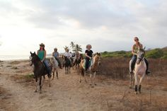 Trail ride on the beach with Equisol Retreats! www.equioslretreats.com