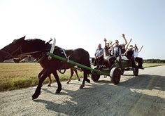 A rustic Lithuanian village wedding celebrating old traditions and a simpler way of life. A vintage wedding dress and a 4 hour horse and cart journey! Lithuania Travel, Wedding Company, Way Of Life, Something Beautiful, Simple Way, Fathers, Roots, Journey, Horses