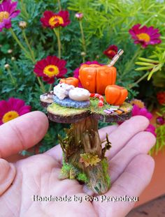 Fairy tea  table with pumpkin set for dollhouse 1/12, terrarium - 6 TIMES TREASURY ITEM. $44.90, via Etsy.