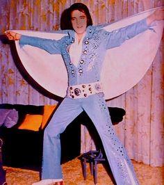 Chris Elvis Tribute Show: Elvis Presley& Jumpsuit Day Elvis Presley, Elvis And Priscilla, Lisa Marie Presley, Priscilla Presley, Elvis Aloha From Hawaii, Memphis Tennessee, Star Pictures, American Singers, Mississippi