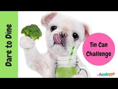 Hilarious - in this video watch the kids v the not kids fight it out to be the Dare to Dine Champions ! This weeks Foodoppi Challenge is Ham or Jam - are t Fun Games For Kids, Food Challenge, Dares, Ham, Hilarious, Challenges, Teddy Bear, Make It Yourself, Canning