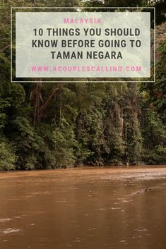 Taman Negara national park in Malaysia is the worlds oldest tropical rain forest at 130 million years old. We were in awe of this place, and it should definitely be on the top of everyone's bucket list! If you are interested in visiting this amazing place, here are 10 things you should know before you go. #Tamannegara #Rainforest #Tropicalrainforest