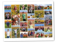 Customizable Collage Canvas $ 39 | Groupon National Deal is back !   I love these new designs