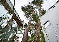 RESIDENCE OF DAISEN  Architect: Keisuke Kawaguchi+K2-Design  Location: Yonago, Japan  Year built: 2013    The house site is situated in the midst of abundant cherry and pine trees, standing at natural well-balanced intervals with trunks reaching towards the sky with bountiful leaves. The figures of the trees are beautiful. They are the legitimate habitants of the forest. Sensitive dialogue with the site is requisite to building a house that lies in coexistence with nature.