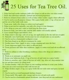 cedargrass:  livin6lovin:  wiccateachings:  25 uses for Tea Tree Oil. Tea tree oil, also known as Melaleuca alternifoliais, is an essential oil, it has such a diversity of usefulness that's both practical and convenient that you'll never want to live without it again!  Removes ticks  This info graphic literally covered everything. How could i possibly add more? Reblog! Everyone should know about the efficacy of Tea Tree Oil. Also, as usual… be very careful with essential oils as they are…