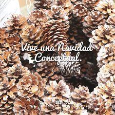 ¿Necesitas ideas para decorar tu casa esta #Navidad? Visita #Conceptual y encontrarás todo para que esta celebración sea espectacular. Te esperamos en #IndianaMall local 164. www.conceptual.com.co
