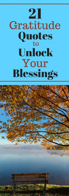 21 Gratitude Quotes to Unlock Your Blessings - Must read