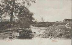 The Meads Sittingbourne