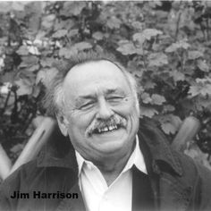 Jim Harrison Author of Legends of the Fall, Revenge, Dalva and many other superior novels. Poem: I left this mangy little three-legged bear two big fish on a stump. He ate them at night and at dawn slept like a god leaning against the stump in a chorus of birds.