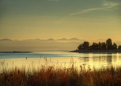 I'm fortunate to drive by Parksville Bay every morning on my way to work. I've started taking my camera with me to catch morning light like this. Varying cloud patterns and tide levels can give a totally different look to this peaceful scene. West Coast Weather, September Morn, Vancouver Island, Mountains, Sunset, Wall Art, World, Nature, Travel